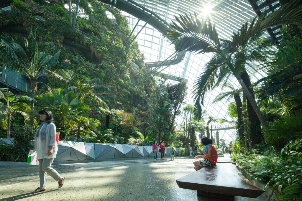 Gardens by the Bay – Conservatories