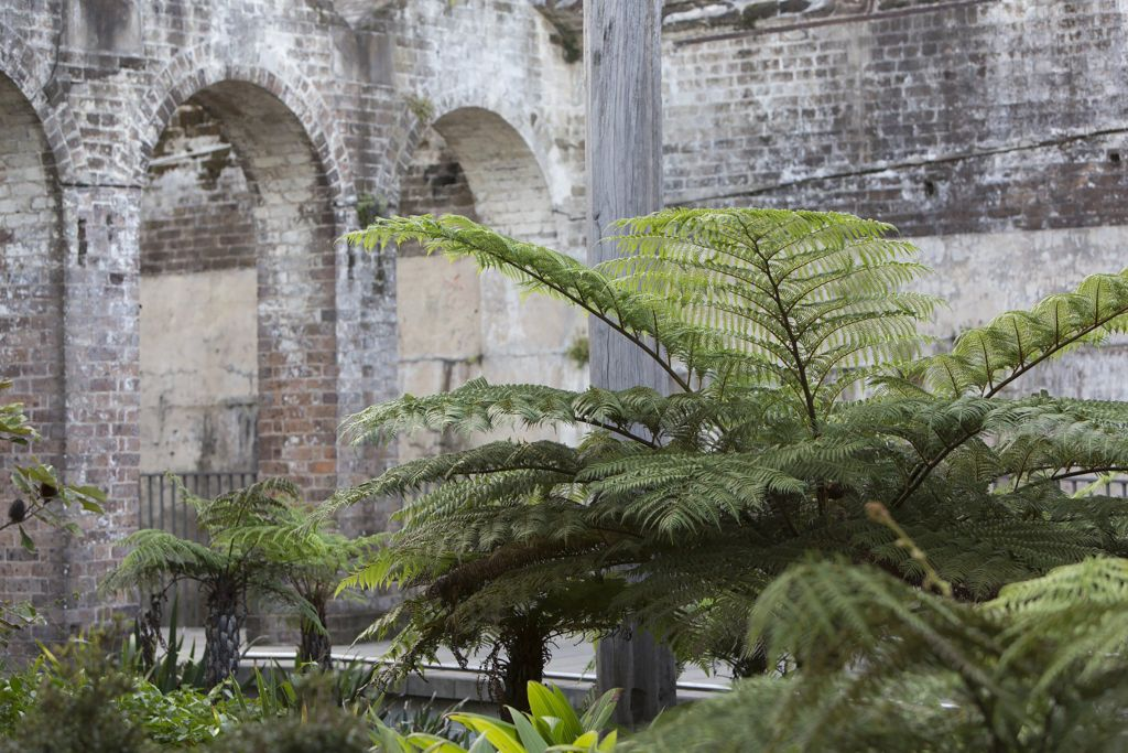 Paddington Reservoir by JMD design