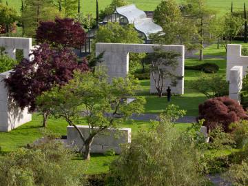 Tree Museum by Enzo Enea