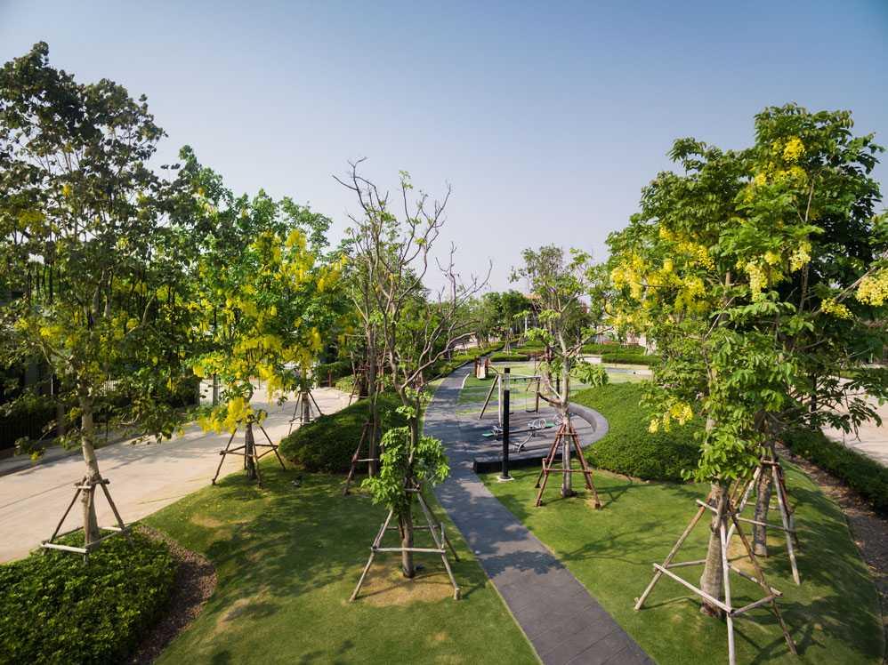 burasiri khon kaen landscape design by Shma
